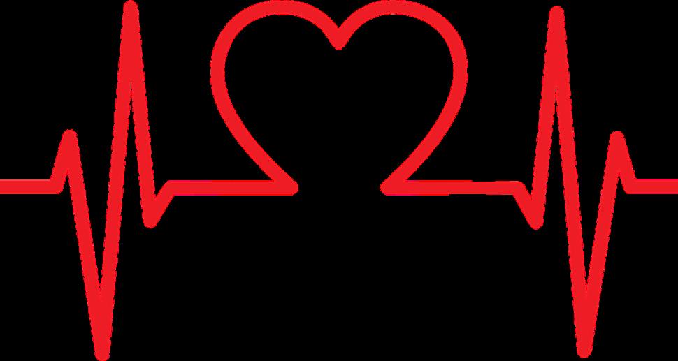 srdce-vladca-organov